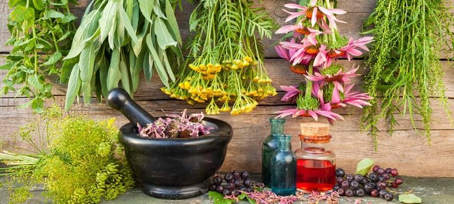 Dry Loose Herbs